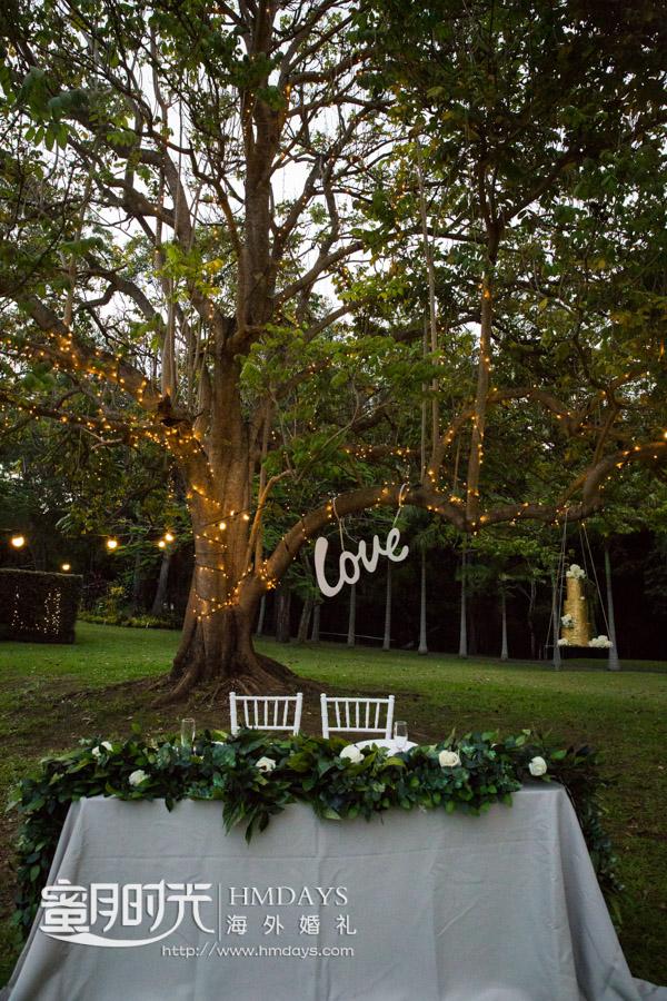 大树下的新人区特写 摄影师客片效果展示