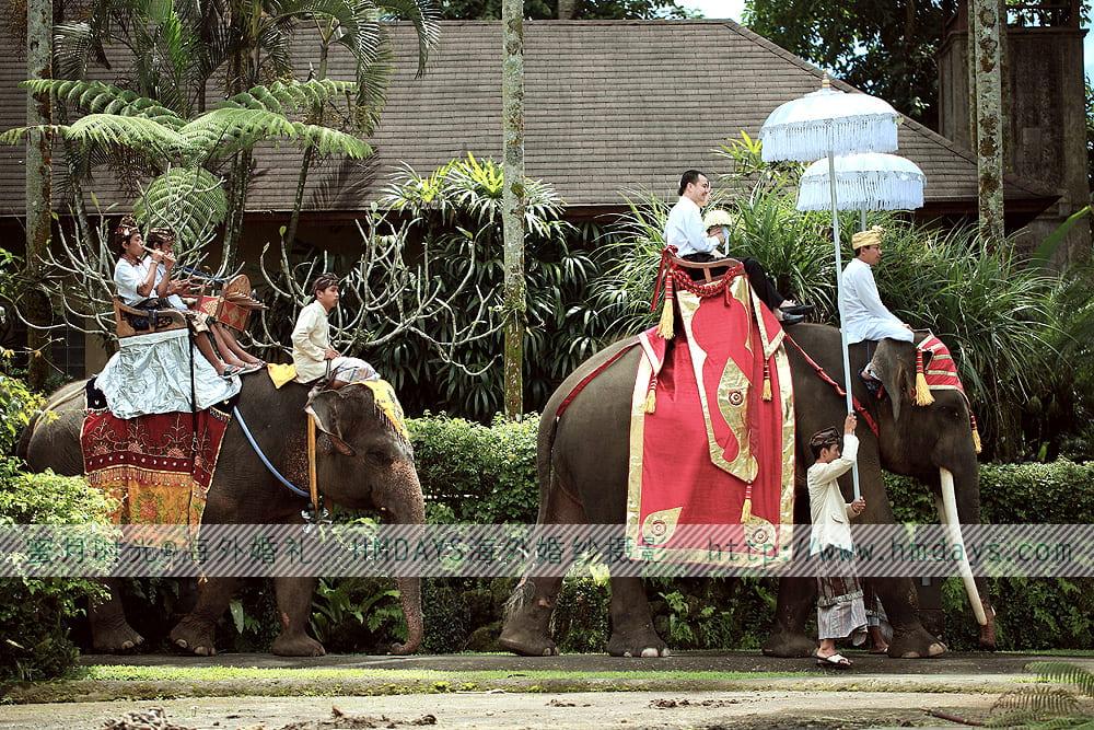 大象公园婚礼