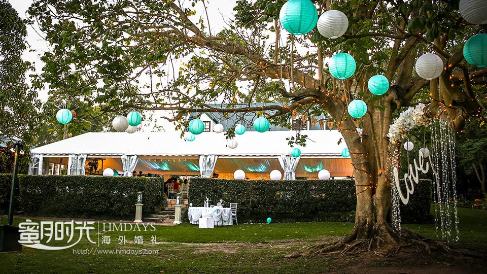 气球装点的大树又呈现出另一番风味 摄影师客片效果展示