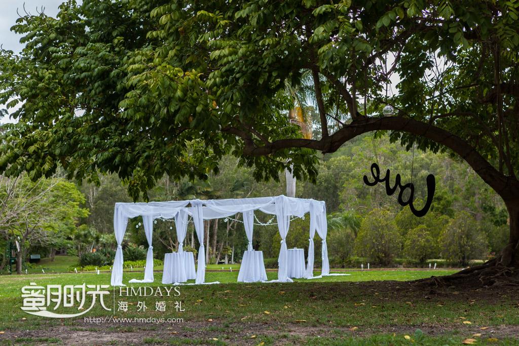 大树下的草坪婚礼远景 摄影师客片效果展示