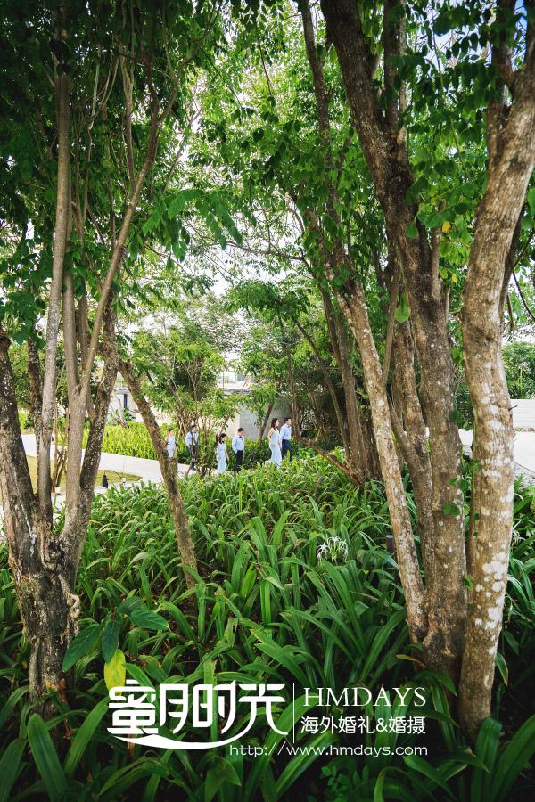 巴厘岛Alila阿丽拉婚礼|漂亮的伴娘和帅气的伴郎入场_-巴厘岛教堂婚礼_|海外婚礼