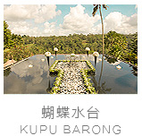 巴厘岛蝴蝶水上婚礼照片