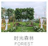 巴厘岛时光森林海景草坪婚礼照片