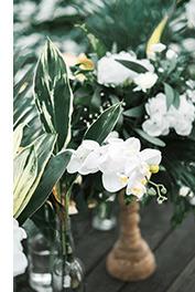 海外婚礼布置,巴厘岛婚礼布置,海外婚礼晚宴布置,巴厘岛婚礼晚宴布置